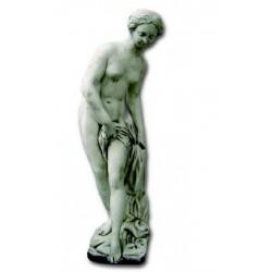 Venus desnuda