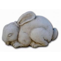 Conejo dormido